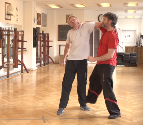 Take down - Wing Tsun